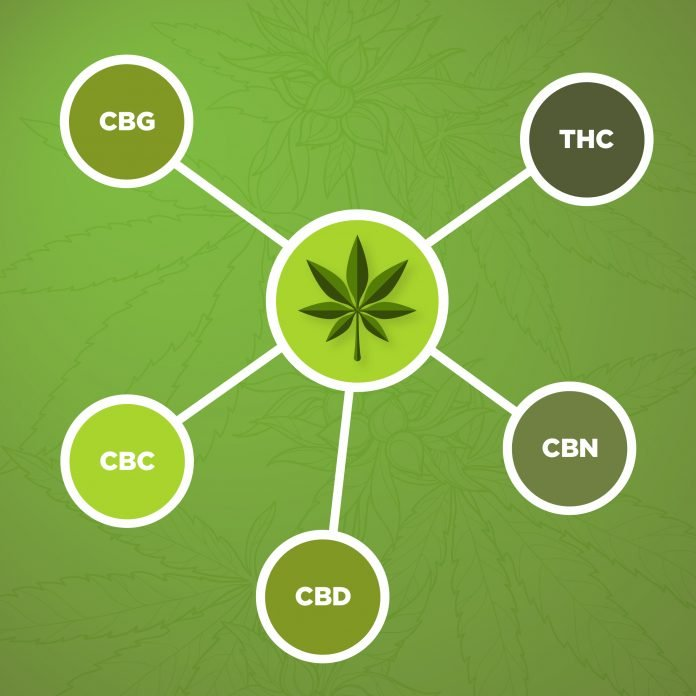 common types of cannabinoids found in cannabis