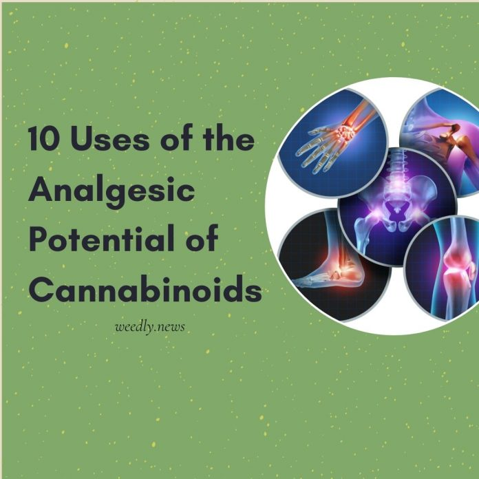 10 uses of the analgesic potential of cannabinoids